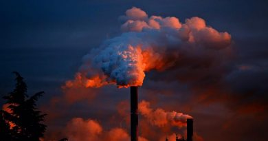 Da fábrica ao consumidor: a redução de desperdícios configurada como princípio organizacional