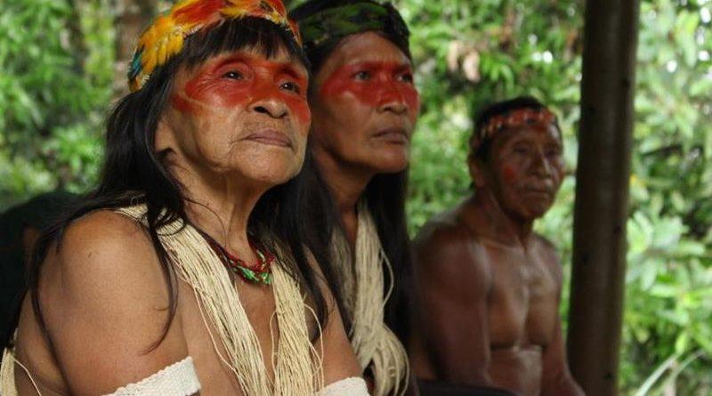 ONU: é essencial que países mobilizem recursos para proteger povos indígenas na pandemia