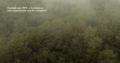 Ecofuturo lança vídeo sobre o Parque das Neblinas