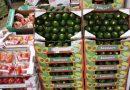 Agricultura de SP promove ações para aprimorar a padronização de hortifrutis