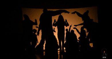 FESTIVAL INTERNACIONAL DE SOMBRAS