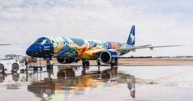 Aeronave Ararinha Azul